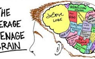 Free lecture adolescent brain